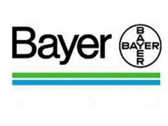 Bayer N (Dax 30): in Borsa i massimi storici